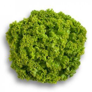 Lettuce – Green Lollo Rosso