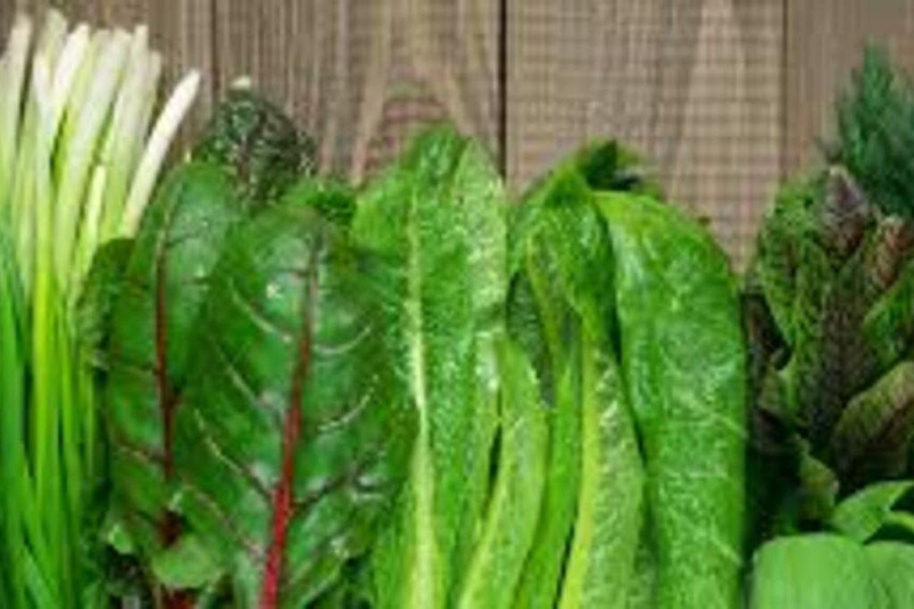 LeafyGreens1
